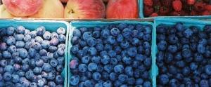 Linvilla blueberry fest